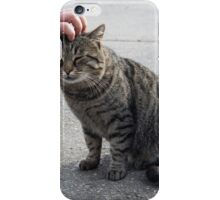 Female hand closeup petting stray gray cat iPhone Case/Skin
