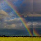 Rainbow by Simon Metcher