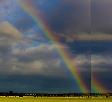 Rainbow by Simon Metcher