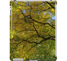 Salcey Forest in Autumn iPad Case/Skin