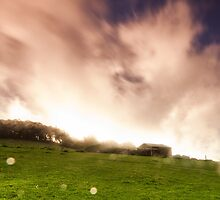 One Tree Hill, Australia by WavesPhotograph