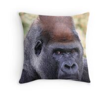 """Silverback Portrait"" Throw Pillow"