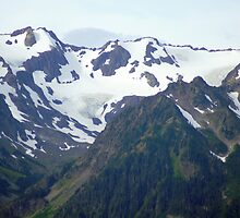 Olympic Mountains from Hurricane Ridge by Loisb