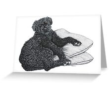Cocotte - Bouvier De Flandres Greeting Card