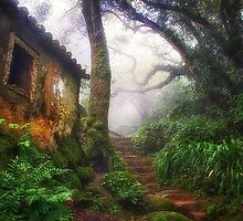 Convent of the Capuchos by Taylor Moore