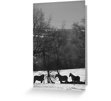 Wintery Equine Greeting Card