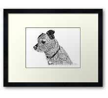 Raggy dog - Terrier Framed Print