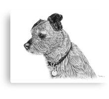 Raggy dog - Terrier Canvas Print
