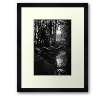 Reflected Country Lane Framed Print