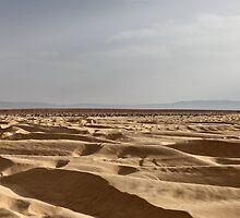 desert by mrivserg