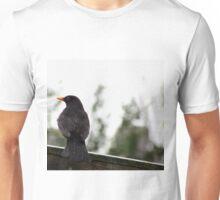 Blackbird Sitting On A Fence Unisex T-Shirt