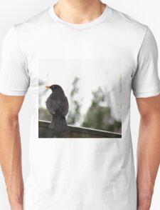 Blackbird Sitting On A Fence T-Shirt