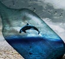 Dolphin in a Bottle Sticker