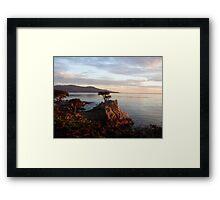 The Lone Cypress Framed Print