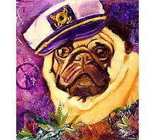 Captain Pug Photographic Print