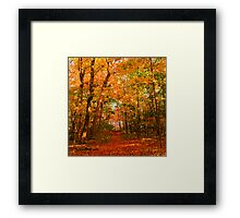 Heavenly Pathway Framed Print