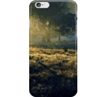 Near Mount Field National Park iPhone Case/Skin