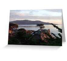 The Lone Cypress 3 Greeting Card