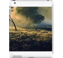 Near Mount Field National Park iPad Case/Skin