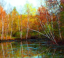 Autumn Reflections by Docharmony