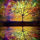 Reflected Dreams by Tara  Turner