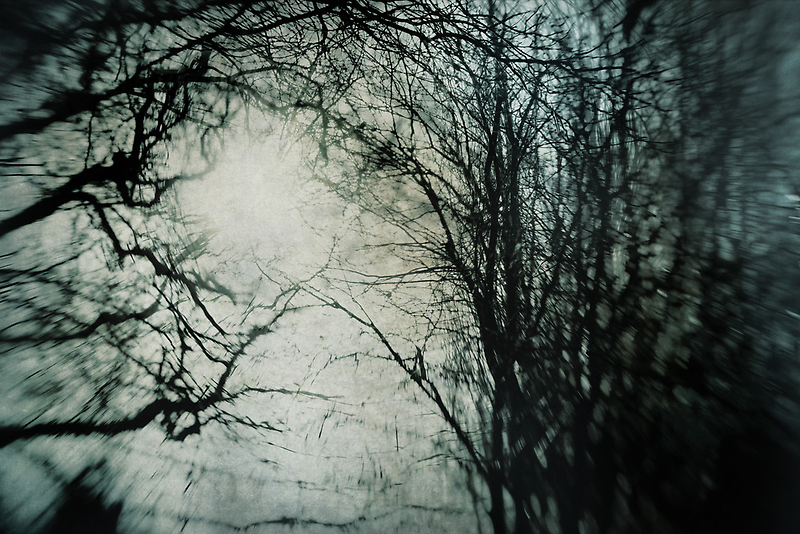 Bleak Winter by Sharon Johnstone