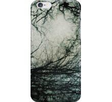 Bleak Winter iPhone Case/Skin