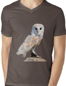 Barn owl on a fence post Mens V-Neck T-Shirt
