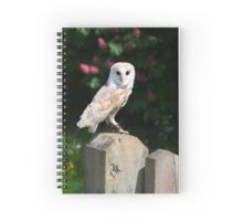Barn owl on a fence post Spiral Notebook