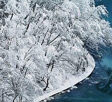 Winter rhapsody by Lidija Lolic