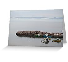 Foggy Morning in the Cove Greeting Card