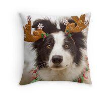 Reindeer Collie Throw Pillow