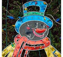 The Reflective Snowman by Michel Godts