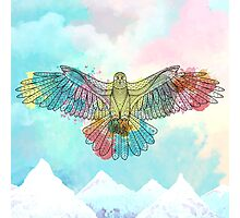 Colorful Eagle Photographic Print