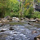 Mountain Stream II - GSM Tennessee by Tony Wilder
