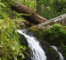 Waterfall - Gatlinburg Tennessee by virtualdiablo
