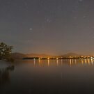 Lake Wanaka Night Tree by Paul Campbell  Photography