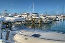 Busy Marina in Nassau, The Bahamas by 242Digital
