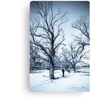 Trees Along The Yarra Canvas Print