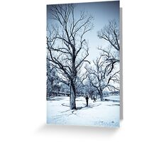 Trees Along The Yarra Greeting Card