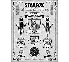 Star Fox Nintendo Vintage Poster Photographic Print