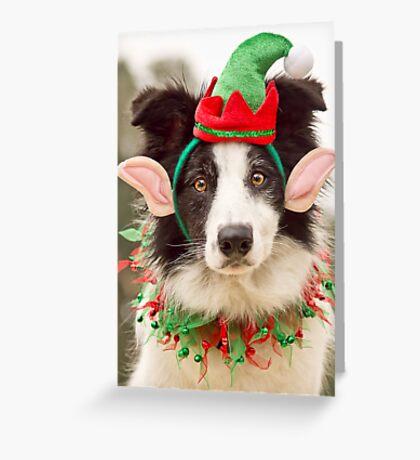 Elf Collie Greeting Card