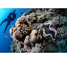 Underwater photography of a large clam in a coral reef Photographic Print