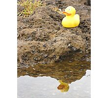 Duckscovering The Self (part one) Photographic Print