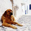 Santorini Alley by Robyn Carter