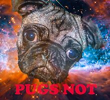 Pugs Not Drugs by GenoYon