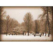 A Winter's Scene Photographic Print