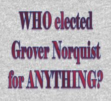 Who elected Norquist? by artbyjehf