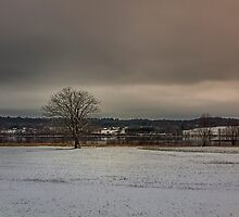 Snow Field by Jamie Cameron