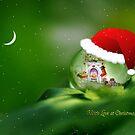 Santa drop by Lyn Evans
